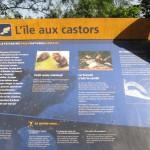 île aux castors au parc de la Feyssine